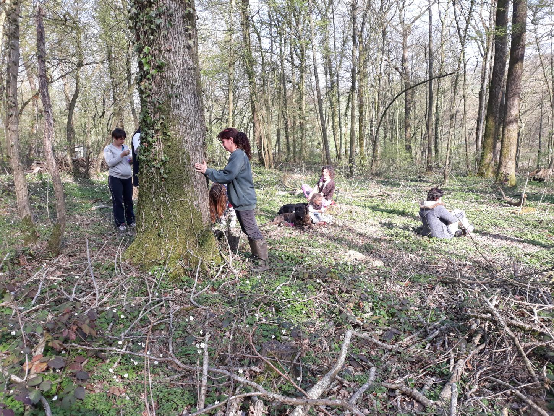 Retour sur l'atelier Apprendre le soin énergétique avec les animaux du 31 mars